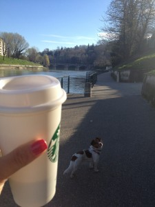 spring time at #lamiatorino calls for early morning walks & to go coffee with Stella the dog